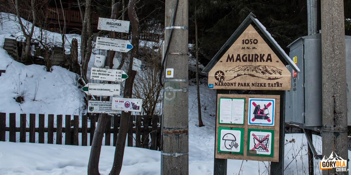 Skrzyżowanie szlaków w Magurce