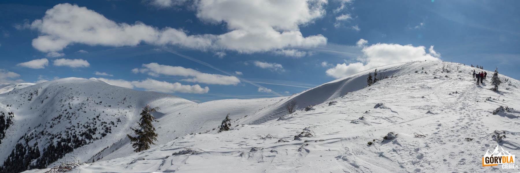 Widok z sedla Zámostskej hole na grań i szczyty, m.in.: Ďurková (1750 m), Maly Chabenec (1840 m) i Chabenec, 1955 m)