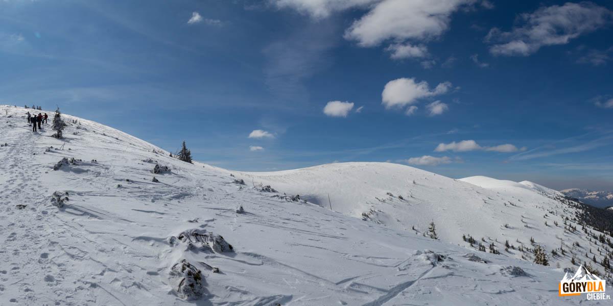 Widok na zachód z podejścia na główną grań Dumbierskich Tatr - po prawej przełęcz sedlo Zámostskej hole i szczyty Zámostská hoľa (1612 m) i Latiborska hola (1643 m)