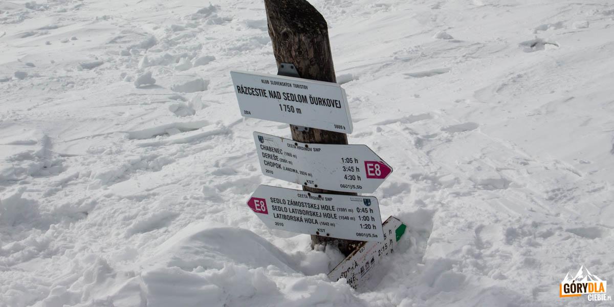 Razcestie nad Sedlom Ďurkovej (1750 m)