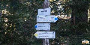Szlaki na główny grzbiet Niżnych Tatr (Dumbierskich Tatr), żółty wychodzi na sedlo Zámostskej hole, a niebieski na sedlo Latiborskej hoľe