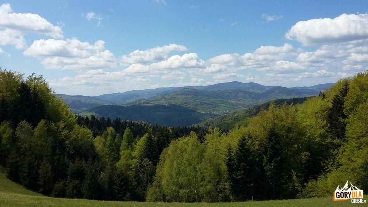 Panorama Gorców zdrogi naKoźlarz