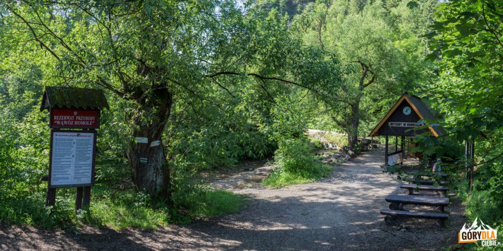 Wejście do Wąwozu Homole
