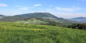 Szczebel widziany z podejścia na Adamczykową (611 m)