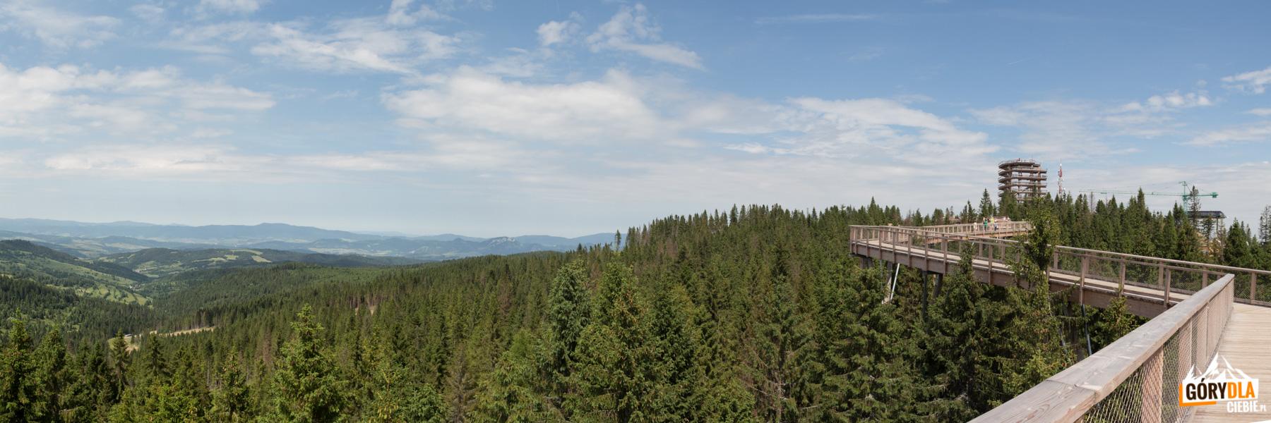 """Widok wzdłuż """"Ścieżki wśród koron drzew"""", a na horyzoncie Gorce"""