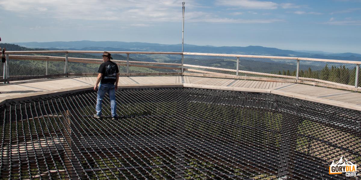 Sieć adrenalinowa o powierzchni 88 m na szczycie wieży widokowej