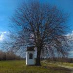 Ponad 100 - letnia kapliczka nad Klikuszową, na Rabicach w stronę Sieniawy. Stara Zakopianka - Klikuszowa - Rdzawka. Fot. Józef Rypel