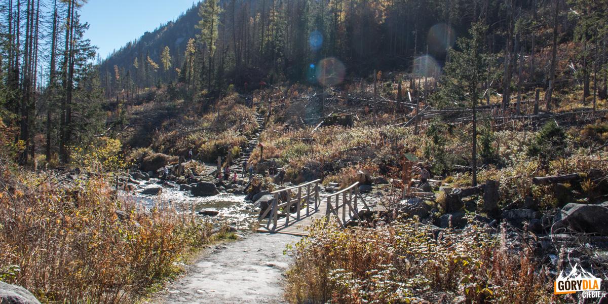 Skrzyżowanie szlaków nadHupackami (Razcestie podHúpačkami), przejście przez potok Zimna Woda,