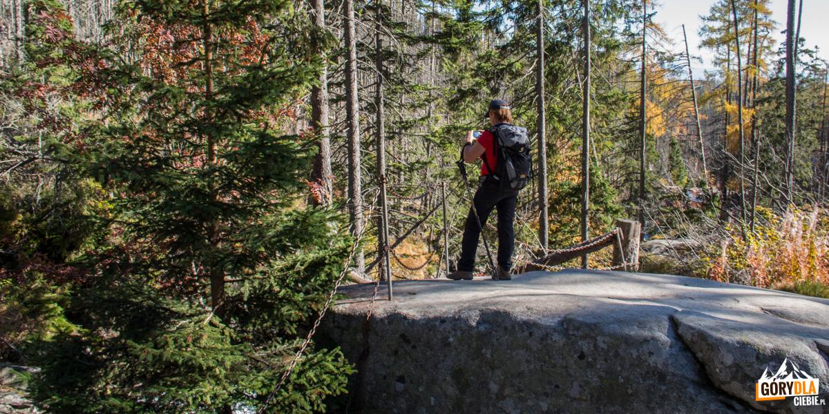 Skryty Wodospad możemy oglądać ze skalnej płyty ogrodzonej łańcuchem