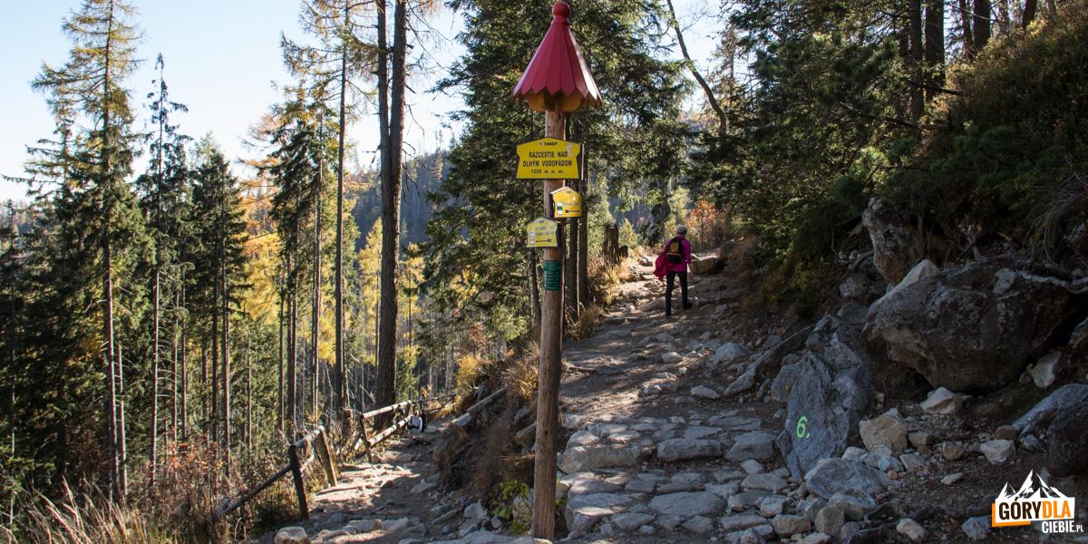 Skrzyżowanie szlaków nad Długim Wodospadzie Zimnej Wody, w prawo ściezka prowadzi na Hrebienok
