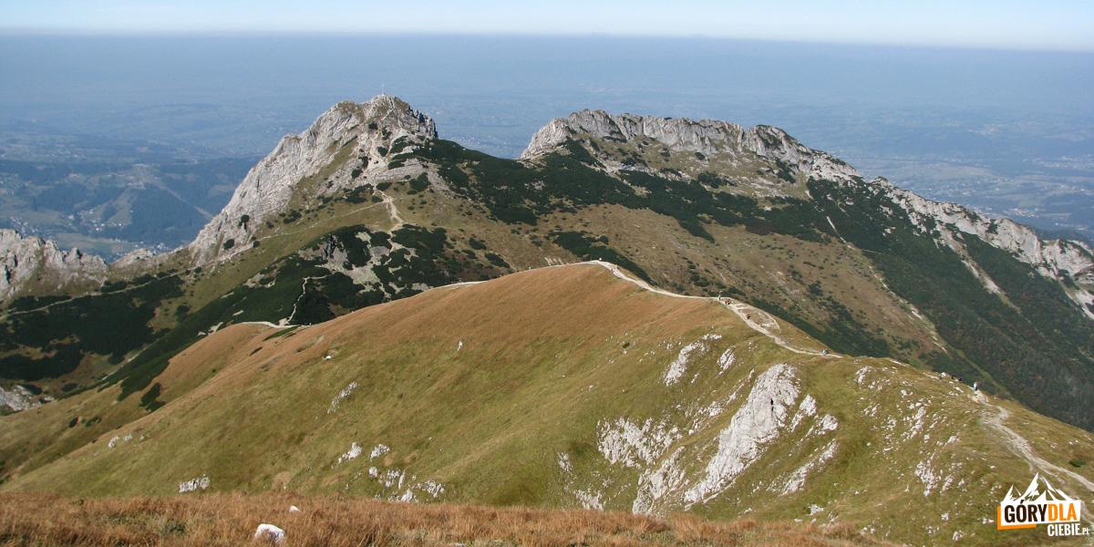 Ścieżka z Kopy Kondrackiej na Kondracką Przełęcz na tle masywu Giewontu