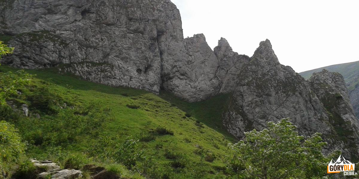 Podejście na Kondracką Przełęcz pomiędzy Siodłową Turnią, a Mnichowymi Turniami