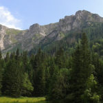 Ściany Wielkiej Turni nad Doliną Małej Łąki