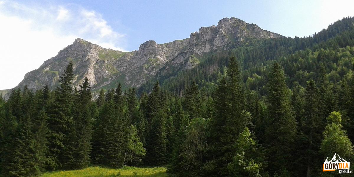 Ściany Wielkiej Turni nadDoliną Małej Łąki