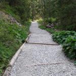 Ścieżka w dolnej części Doliny Małej Łąki