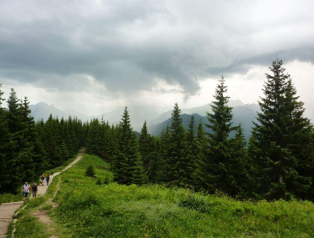 W drodze na Gęsią Szyję, zdj. Waldemar Rusek