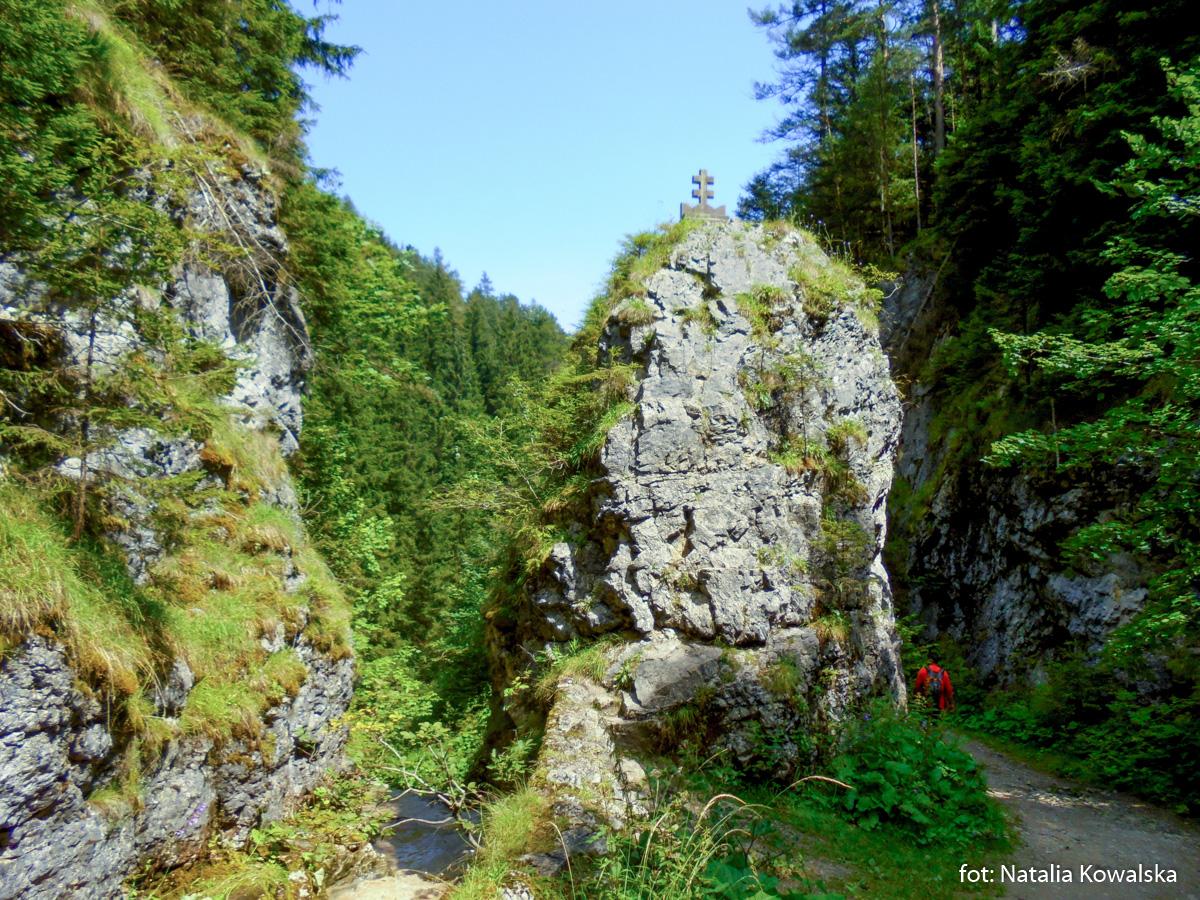 Wejście do Doliny Roztoki, zdj. Natalia Kowalska