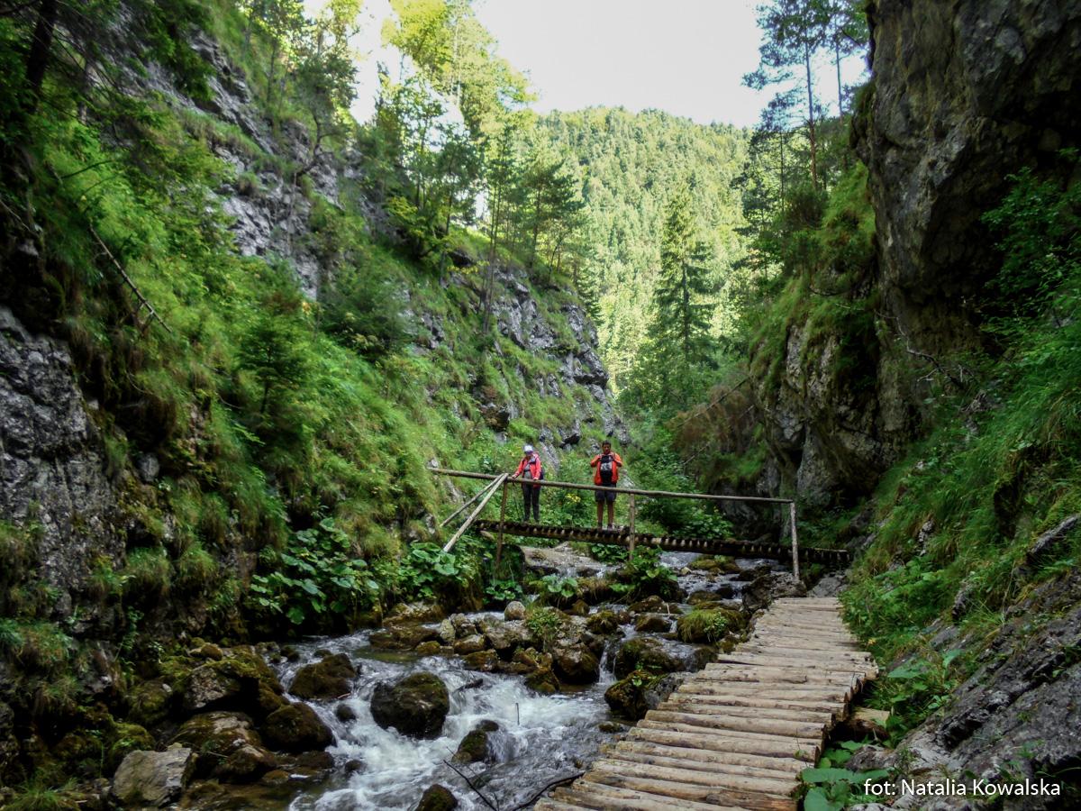 Dolina Prosiecka, zdj. Natalia Kowalska