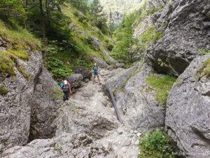Dolina Prosiecka, zdj. S. Kwiatkowski