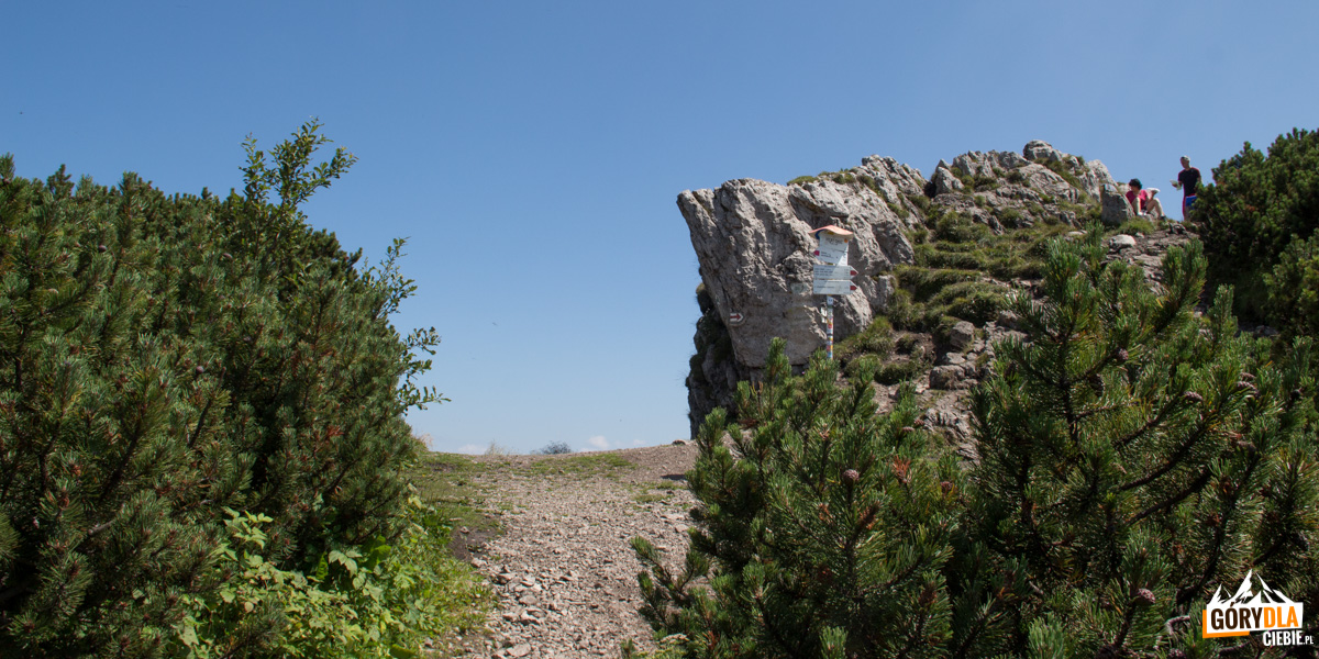 Wielki Chocz (Veľký Choč, 1608 m) jest najwyższym szczytem Gór Choczańskich