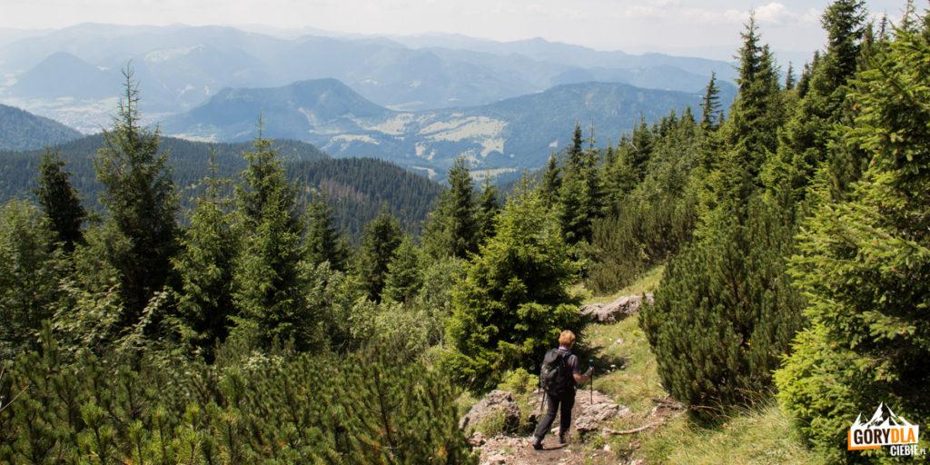 Zejście ze szczytu Wielkiego Chocza