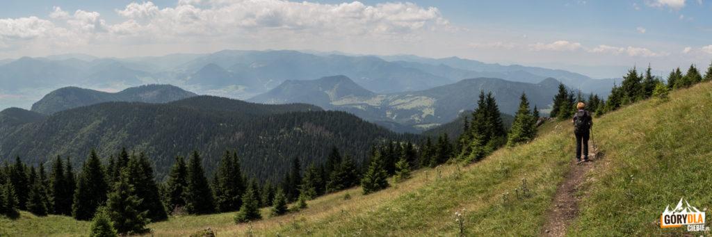 Na zielonym szlaku z Wielkiego Chocza na Średnią Polanę (słow. Stredná poľana)