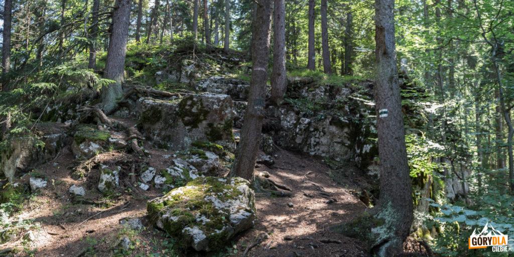 W okolicy szczytu Vŕšok (763 m) znajdują się ciekawe wychodnie skalne