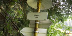 Drogowskazy na polanie Zasadce (745 m)