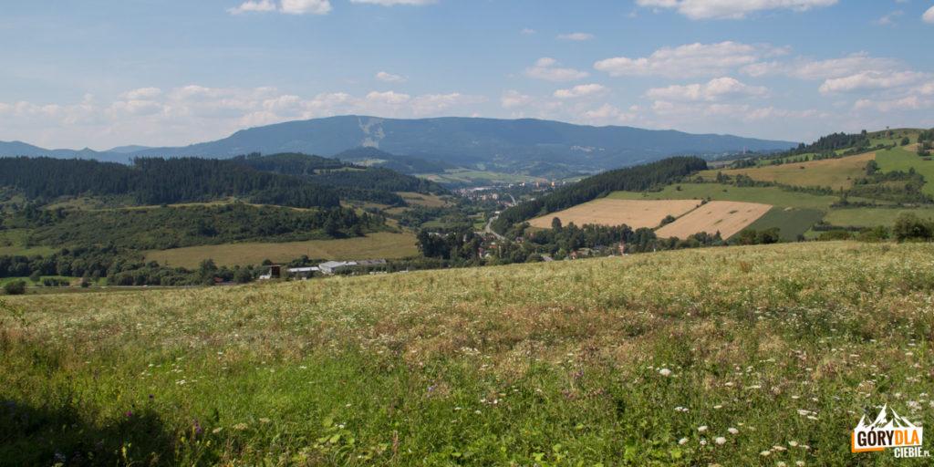 Widok na wieś Jasieniowa (Jasenova)