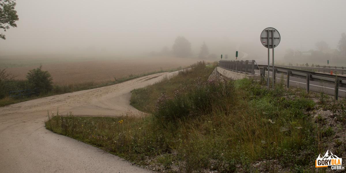 Z przystanku autobusowego we wsi Jasieniowa przy głównej szosie (droga nr 57 E77) kierujemy się za drogowskazami czerwonego szlaku w kierunku południowym boczną drogą prowadzącą wzdłuż szosy