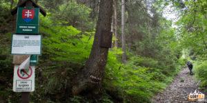 Wielki Chocz objęty jest ochroną – znajduje się tutaj ścisły rezerwat przyrody Choč
