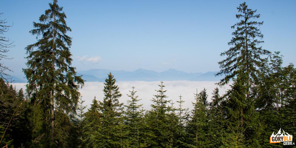Morze mgieł, a nad nimi szczyty Małej Fatry