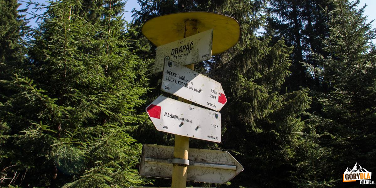 Polana Drapáč (1147 m) - miejsce krzyżowania się szlaków czerwonego i zielonego