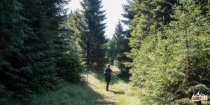 Na trasie czerwonego szlaku ze wsi Jasenová