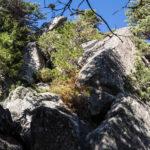 Efektowne skały przy czerwonym szlaku ze Szczyrbskiego Jeziora do Popradzkiego Stawu