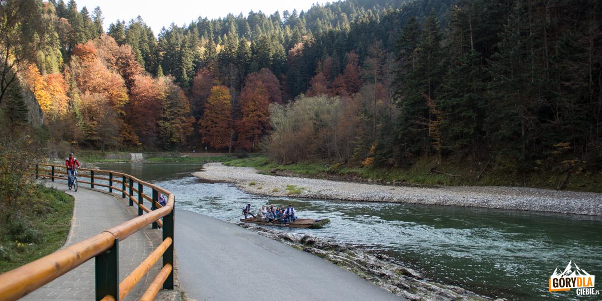 Ścieżki rowerowe i piesze na Drodze Pienińskiej