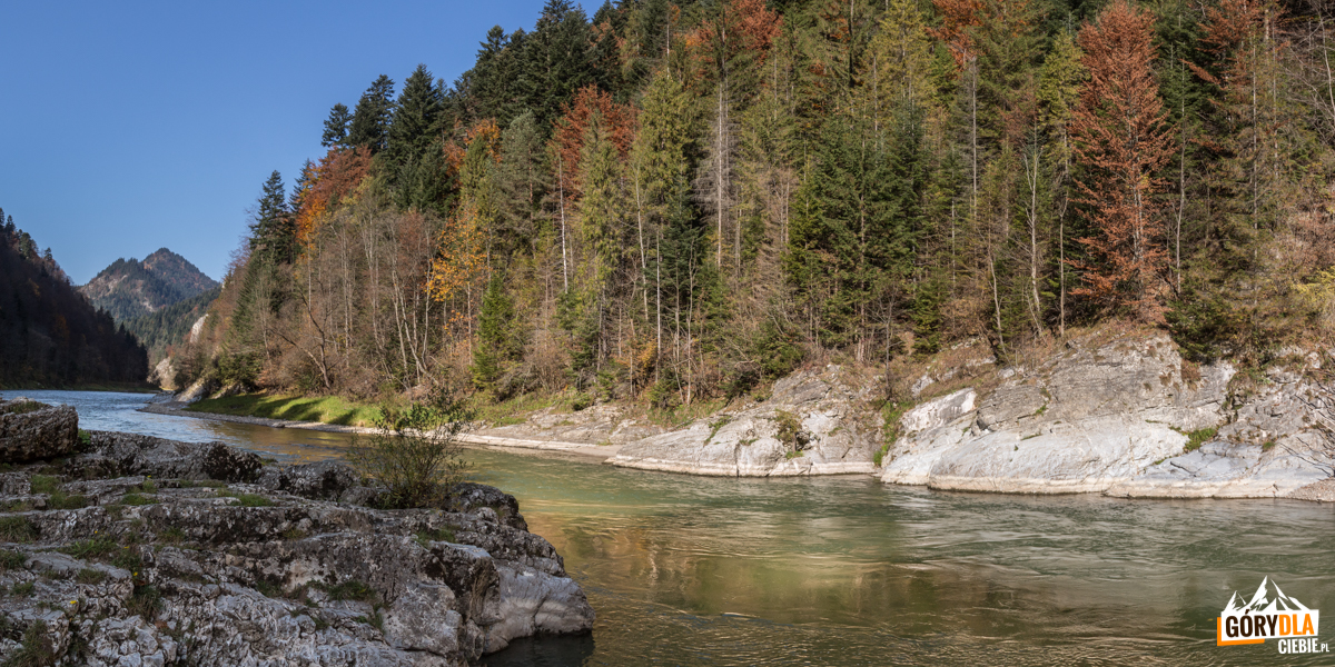 """Skała zwana """"Janosikowy Skok"""" lub """"Zbójnicki Skok""""znajduje się w miejscu największego zwężenia Dunajca"""