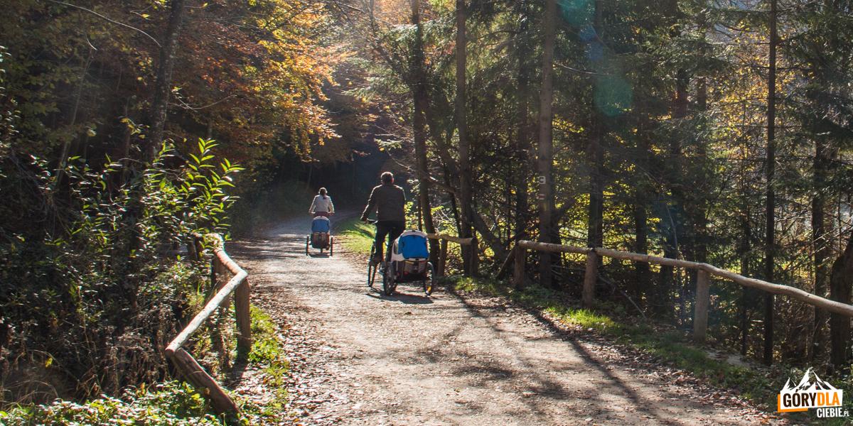 Droga Pienińska jest wspaniałym miejscem na rodzinne wycieczki rowerowe