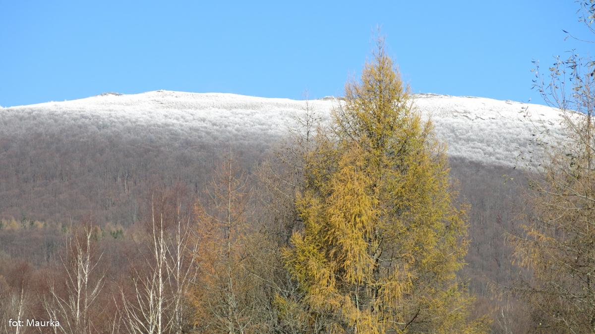 Jesienno-zimowe Bieszczady, zdj. Maurka