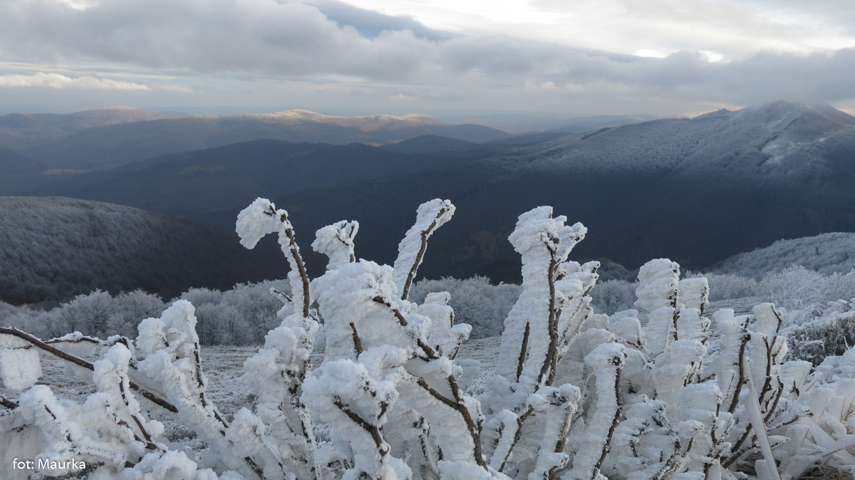 Zima na Połoninie Wetlińskiej, zdj. Maurka