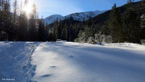 Dolina Chochołowska zimą, zdj. Maurka