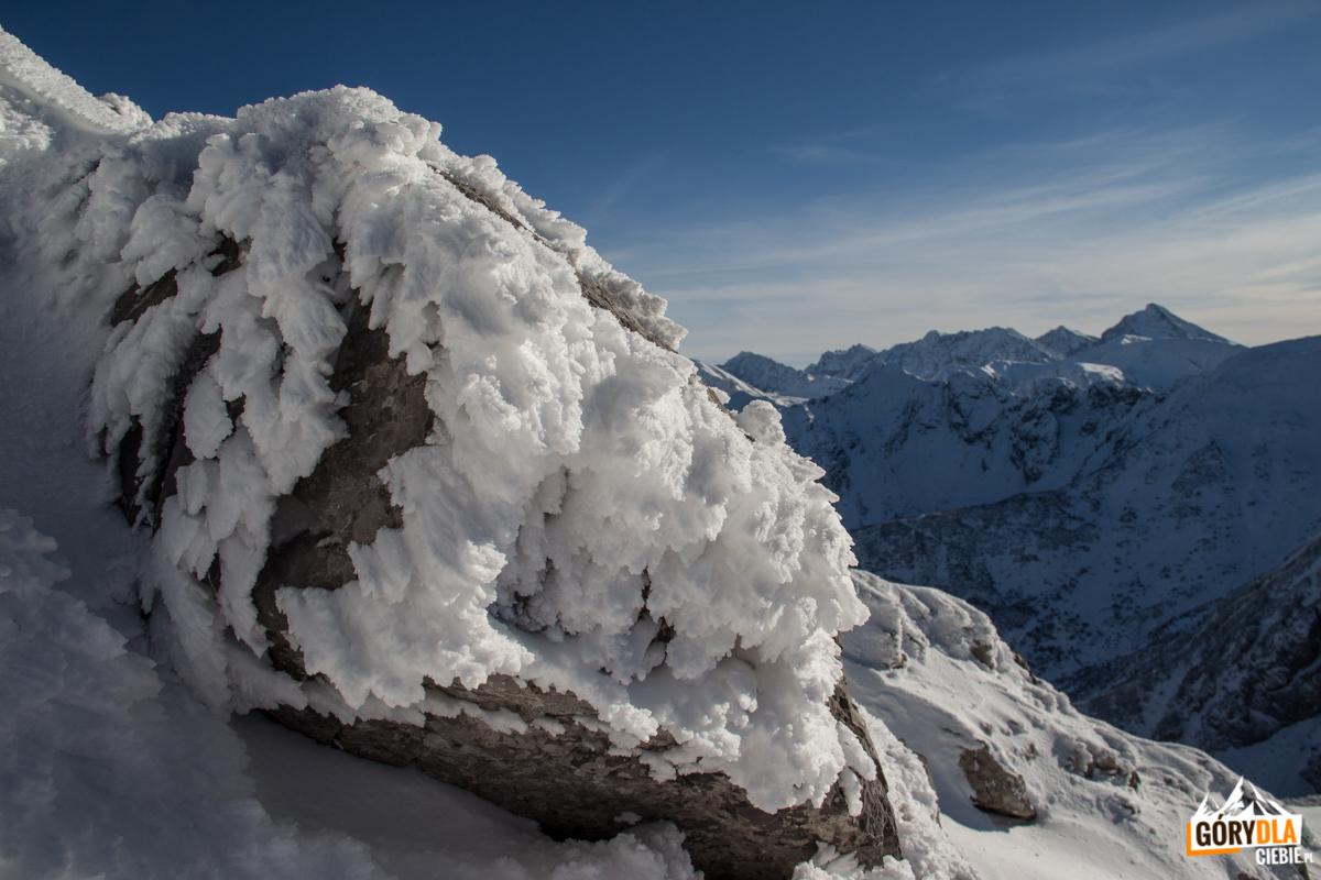 Kozi Wierch i Świnica widziane spod szczytu Giewontu