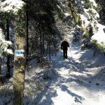 Śnieżnica zimą, zdj. Maurka