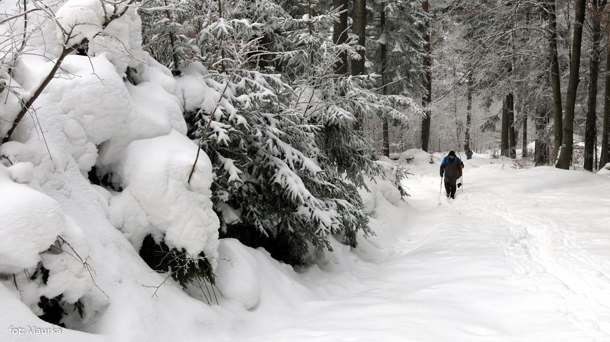 Beskid Niski zimą, zdj. Maurka