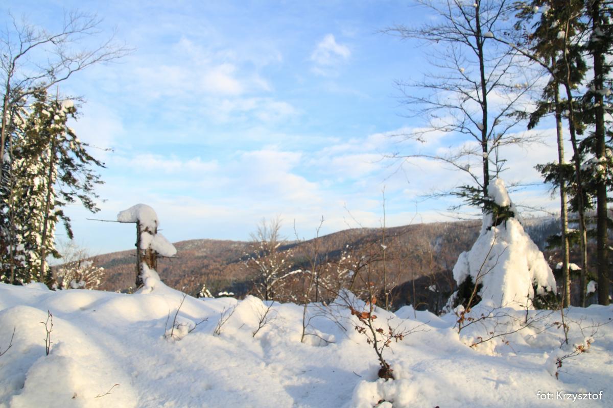 Beskid Mały - początek szlakiem czerwonym pod Potrójną