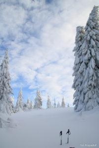 Ostatnie metry przed Potrójną, ogromne ilości śniegu i zasypany szlak wymusza obejście, przechodzimy obok, łąką
