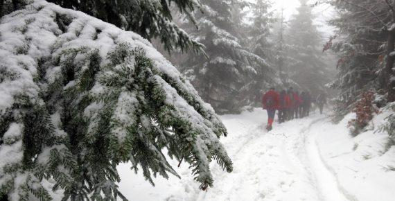 Wycieczka na Czupel (930 m) w Beskidzie Małym, zdj. Maurka