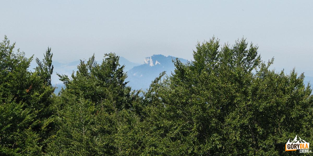 Szczyt Trzech Koron widziany z wieży widokowej na Eliaszówce