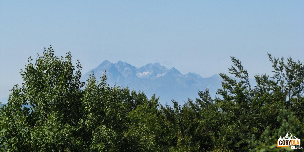 Tatry Wysokie widziane z wieży widokowej na Eliaszówce