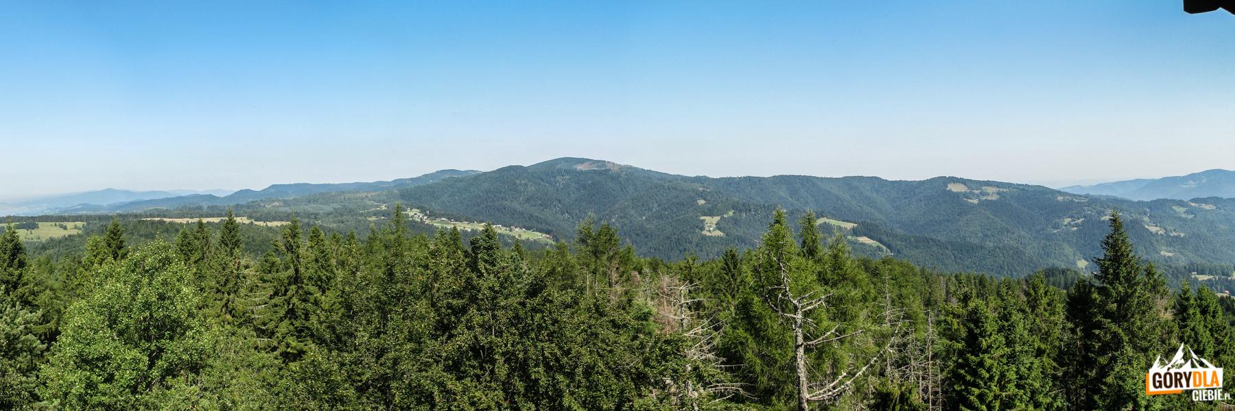 Panorama Pasma Radziejowej z wieży widokowej na Eliaszówce